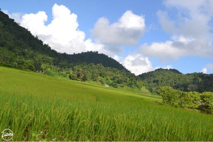 Lawbah-village-Meghalaya-min